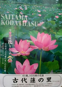 0403古代蓮の里ポスター.jpg
